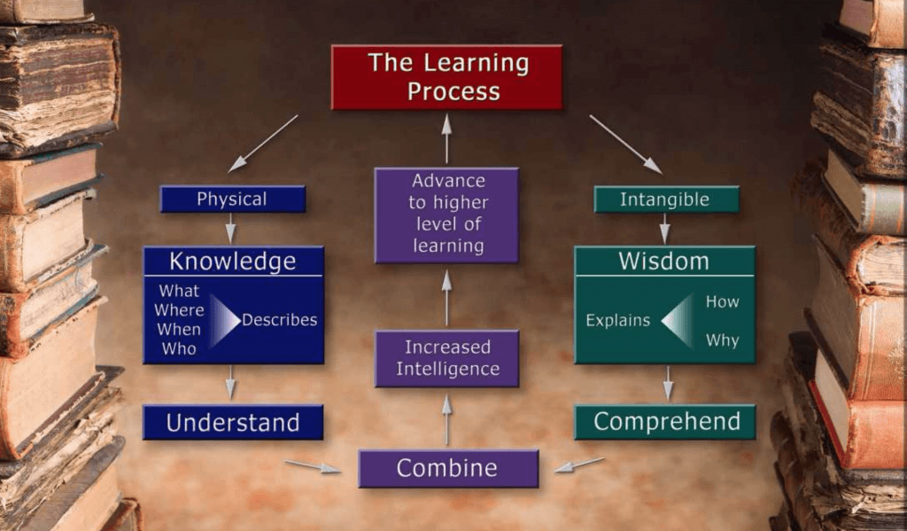 The learning process - universal model